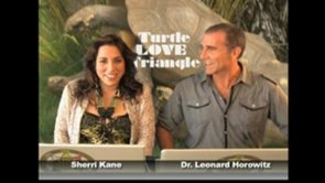 Turtle_LOVE_Triangle_on_The_LOVE_Zone_Pilot_for_TelosTV