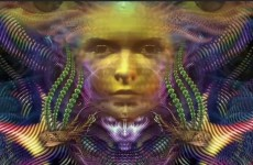 INSIDE THE AYAHUASCA ENTERPRISE thumbnail