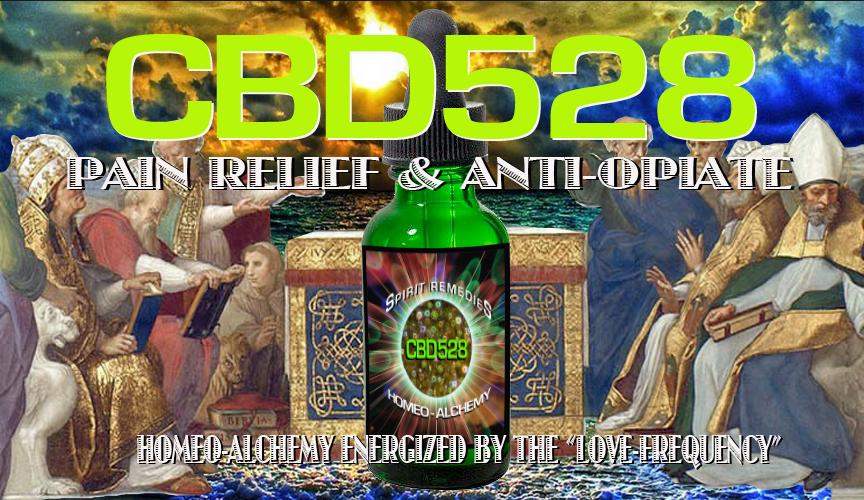 CBD528 BANNER2